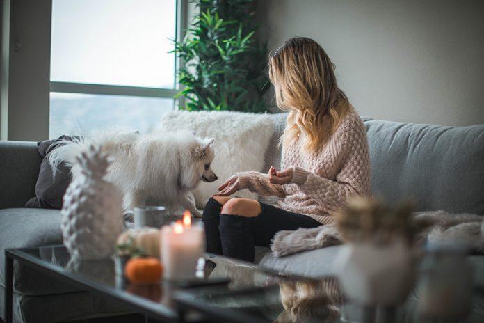 articoli per la casa a domicilio